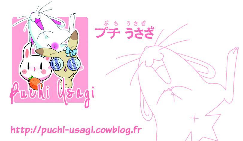 http://puchi-usagi.cowblog.fr/images/cartedevisite.jpg
